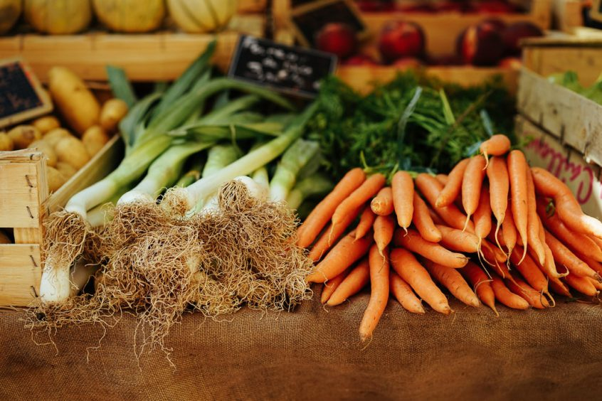 Carrots and green onions