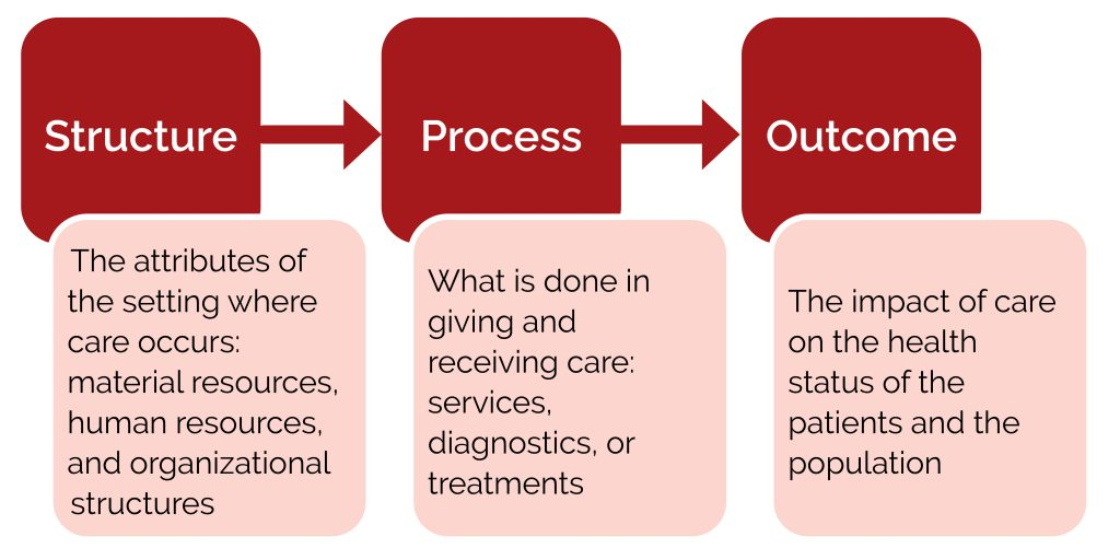 A flow diagram of structure, process, and outcome